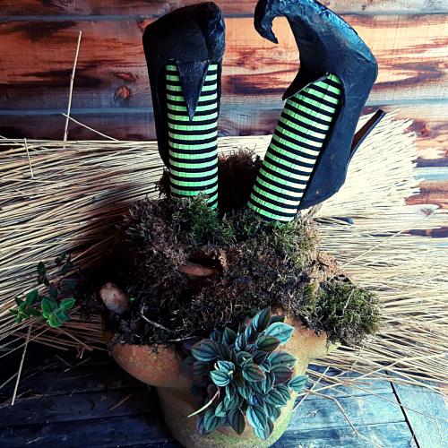 Handmade Halloween heksenbenen in het mos