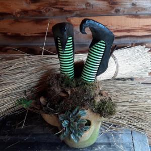 Een echte eyecatcher, deze heksenbenen in het mos. Kant en klaar afgeleverd met bloempot en planten inbegrepen.