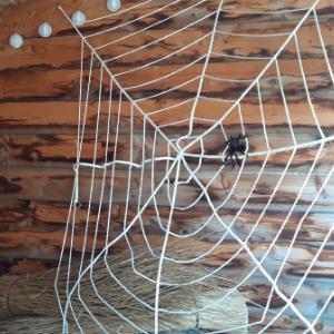 30cm doorsnee spinnenweb.