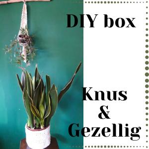 DIY box Knus&Gezellig met daarin materialen voor een macrame plantenhanger en een gehaakte plantenmand