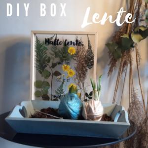 DIY box Lente met daarin een droogbloemenschilderij en narcissenbollen omwikkelt met wol
